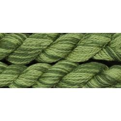 Ivy - WDW Crewel -2198
