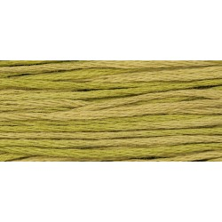 Olive - WDW 2211