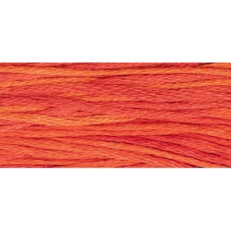 Fire - WDW 2268