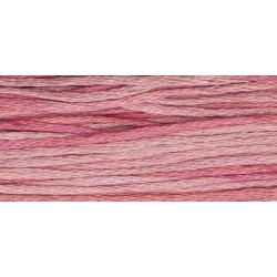 Camellia- WDW 2276