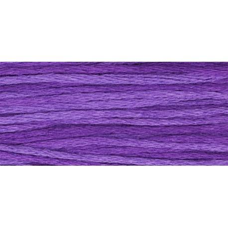 Purple Majesty - WDW 2329