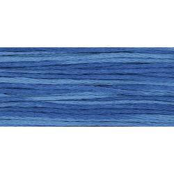 Blue Bonet - WDW 2339