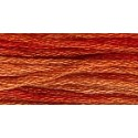 Fragant Cloves - GA 7026