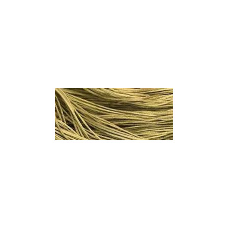 Broom Tree - WDW 1194