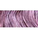 Lavender Rose - WDW 2289