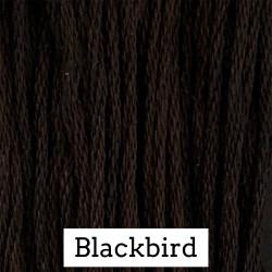 Blackbird - CC 164
